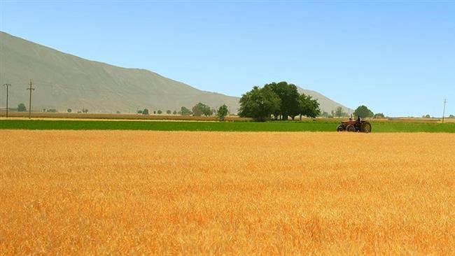 Irã a renunciar a importação de trigo pela primeira vez.