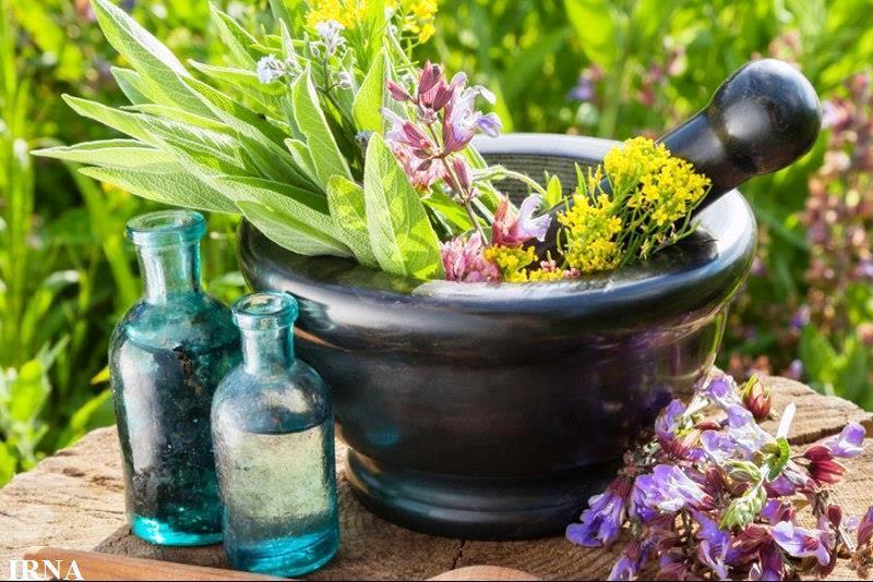 877.000 Kg de plantas medicinais iranianas foram exportadas