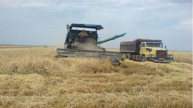 Irã vai impulsionar o setor agrícola na era de pós-sanções