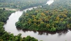 Brasil e Noruega têm parcerias estratégicas em meio ambiente e inovação