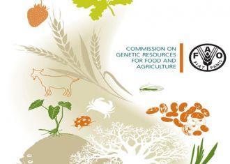 FAO apela a um reforço da biodiversidade agrícola no Irã
