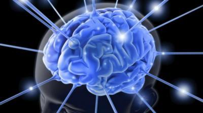 Trabalhos complexos podem beneficiar o funcionamento do cérebro