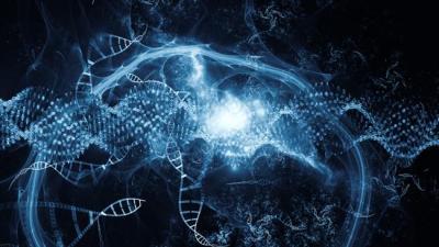 Os genes de bactérias, vírus, fungos encontrados no genoma humano