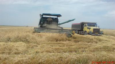Agro setor atrai US $ 590 milhões em Investimentos Estrangeiros Diretos (IED) em nove meses
