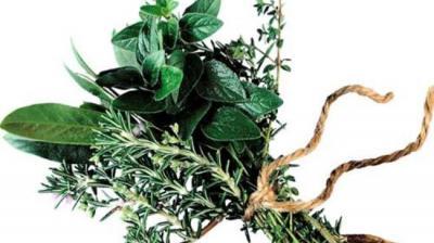 Pesquisadores iranianos desenvolver anti-séptico bucal à base de plantas