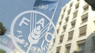Iran, FAO sign MOU to fight malnutrition, hunger across world