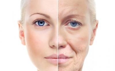 Células-tronco usadas para tornar a pele jovem novamente