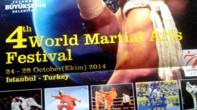 Iran martial artists crested in international tournament
