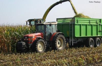 Alta de 6,7% na colheita da soja deverá levar safra de 2020 ao recorde de 240,9 milhões de toneladas