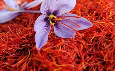صادرات زعفران 5 درصد افزایش یافت