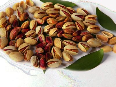 Exportações de pistache do Irã aumentam em 6 meses 20% em relação ao mesmo período do ano anterior