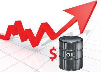 Iran's heavy crude oil price up $10.42 in Feb.: OPEC