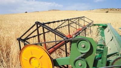 Irã exporta 1 milhão de toneladas de trigo