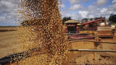 Brasil prevê safra recorde de grãos: 242,1 milhões de toneladas; alta de 31,1%