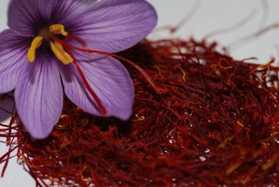 Saffron exports up over 16% in 5 months