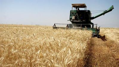 Comerciantes mundiais de grãos na fila para iniciar negócios no Irã