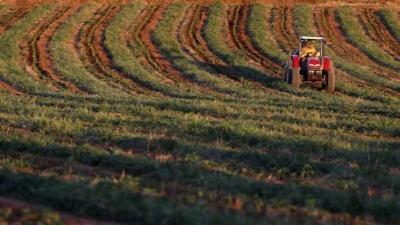 Agropecuária produz riqueza recorde para o Brasil em 2017