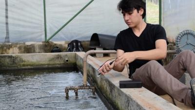 Projeto para otimizar produção de peixes representa o Brasil em 'Copa do Mundo' da tecnologia