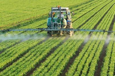 Setor agrícola do Irã cresce 7,4% em um ano