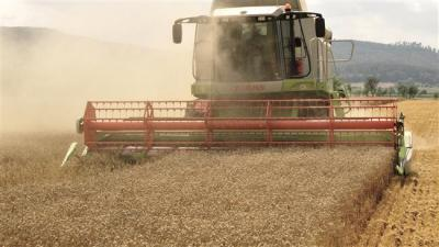 Iran expects bumper wheat crop this year