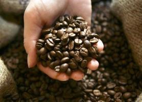 Consumidores russos mudam de perfil e querem mais café especial brasileiro
