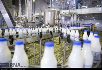 Dairy products exports up by 49% in Fars prov.