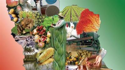 Avaliação ligados a Fitch vê o Irã agronegócio crescer